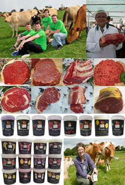 Brown Cow Organics