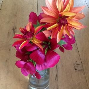 Flora Flowers 1