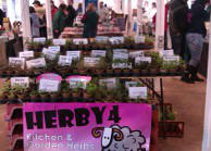Herby4